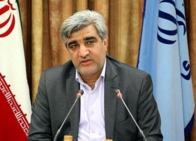 ممنوعیت صادرات چای داخلی لغو شد
